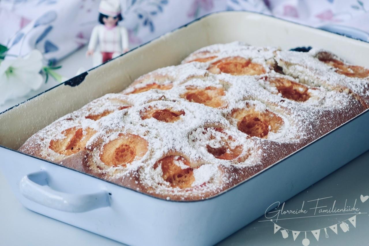 Marillenkuchen Glorreiche Familienküche